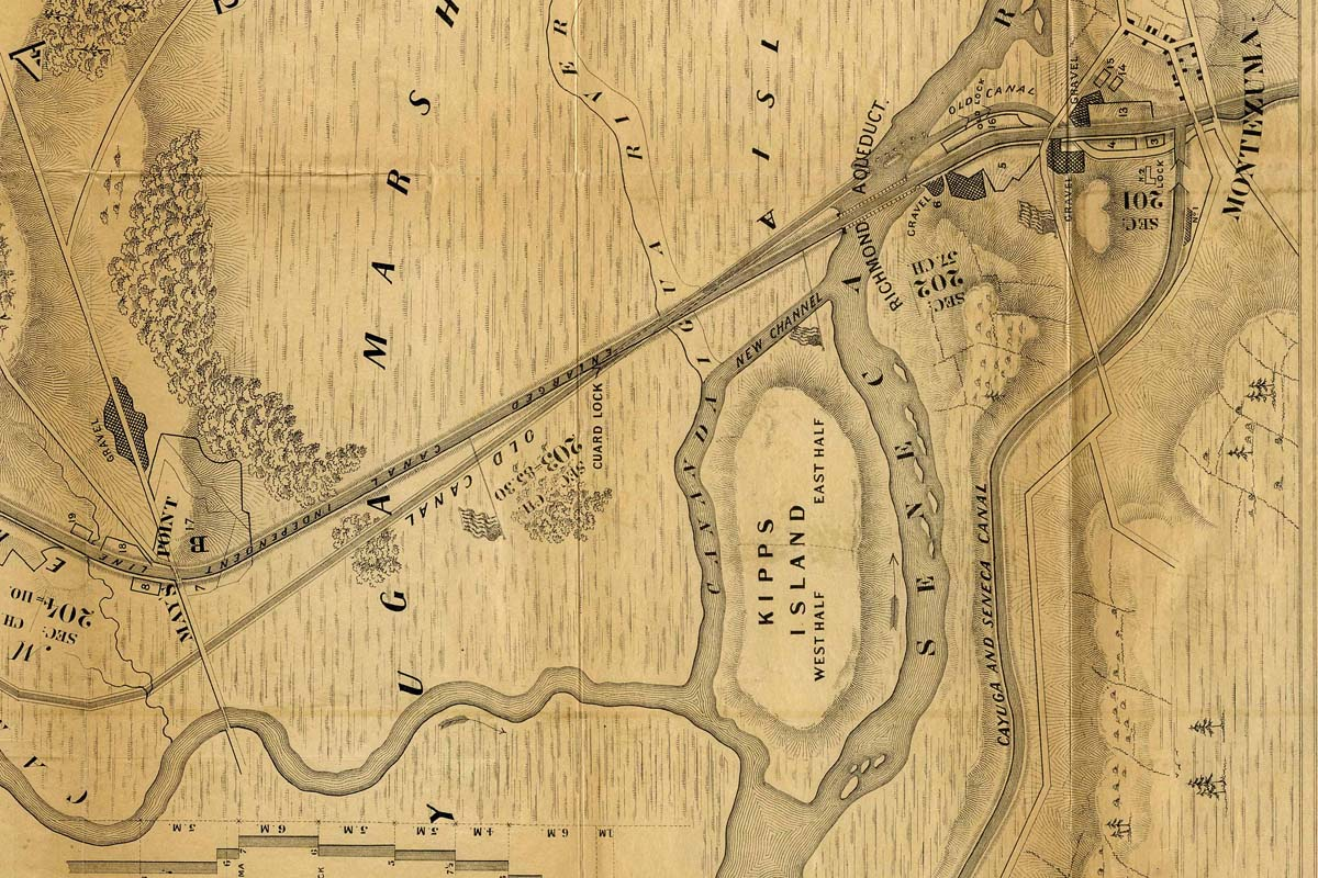 1862 Cayuga Marsh Map